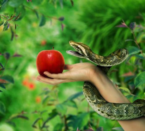 paraíso fruta prohibida adán y eva