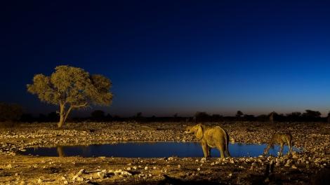 parque-nacional-de-namibia