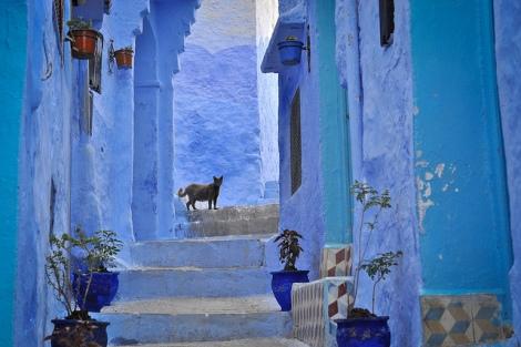 Chefchaouen/ Marrocos. Mário Tomé (CC BY-NC-SA 2.0)
